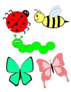 lady-beetle-clipart-cute-butterfly-1